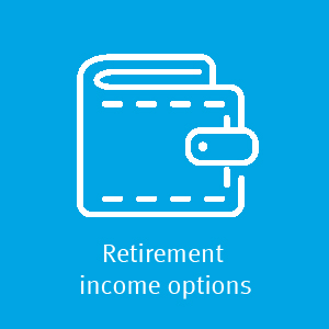 Retirement income options